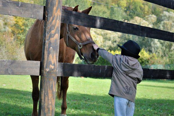 Voordelen van paardrijden voor kinderen